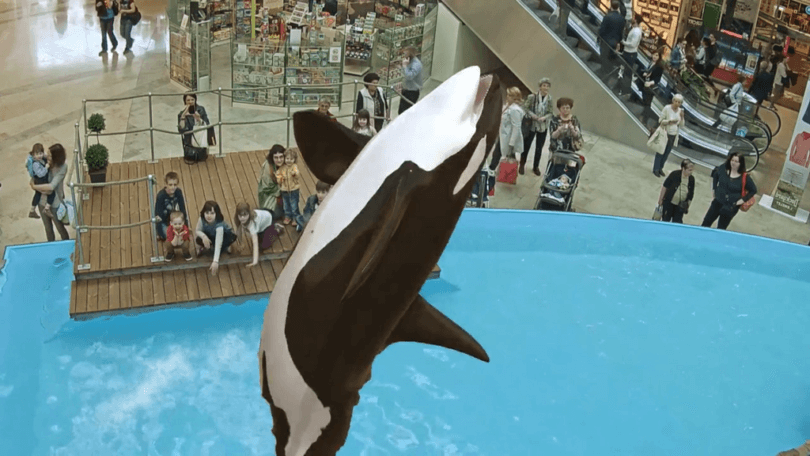 Технологии VR и AR в работе океанариума