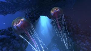 Команда Groove Jones с Wet N Wild создали видео 360 подводного мира