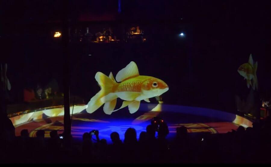 Цирк заменяет выступления животных умопомрачительными AR голограммами